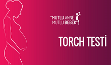 Anoftalmi ve/veya Mifroftalmiye Sebep Olduğu Düşünülen Virsülerden Biri: Torch